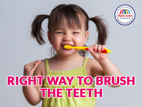 Right way to brush the teeth