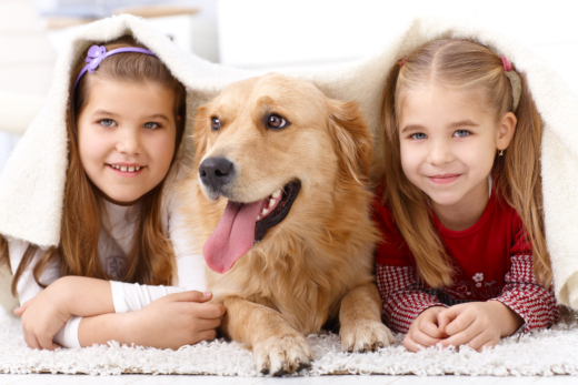 Educate Your Child About Other People's Pets